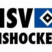 Der HSV tritt auf der Stelle
