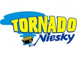 Logo ELV Niesky