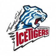 Ice Tigers holen AHL-Verteidiger