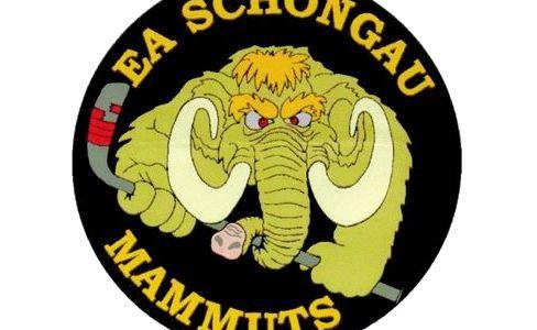 Niklas Marschall und Christoph Altstetter weiter im Trikot der Mammuts!