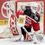 Haie in Augsburg und gegen Schwenningen: Punkte sammeln!
