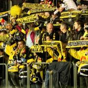 Krefeld Pinguine verpflichten Andrew Engelage