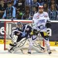 Matt Pelech komplettiert die Verteidigung des ERC Ingolstadt
