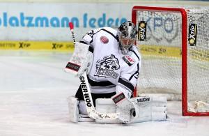 Ice Tigers - DEL Playoffs