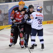 Fischtown Pinguins ohne Fortune