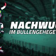 """""""Nachwuchs im Bullengehege"""" – Starbulls präsentieren MaskottchenNachwuchs"""