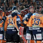 Steve Valiquette wechselt nach Schweden