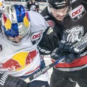 Nächster Deal fix: Ice Tigers binden Marco Pfleger
