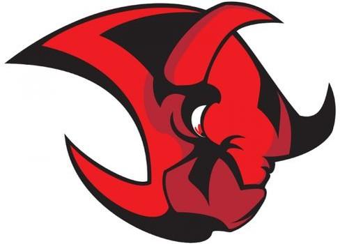 Halle Saale Bulls