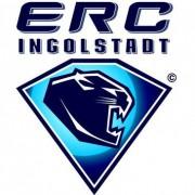 Ingolstadt: Lindfors komplettiert Trainerteam