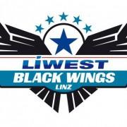 Der nächste Baustein im Kader: Frankokanadier verteidigt für de Black Wings
