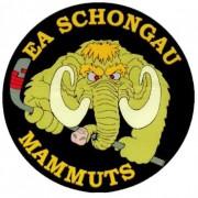 Pegnitz und den Auswärtsfluch besiegt – 3 Punkte für die Mammuts beim Nachholspiel!