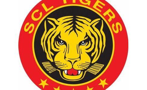 Damian Stettler erhält Einsteigervertrag und Viktor Alm bleibt bei den SCL Tigers