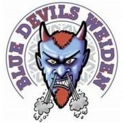 Blue Devils kooperieren zukünftig mit Amberg Wild Lions