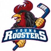 Young Roosters Iserlohn benötigen Hilfe!