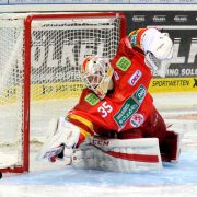 Mathias Niederberger bleibt langfristig bei der Düsseldorfer EG