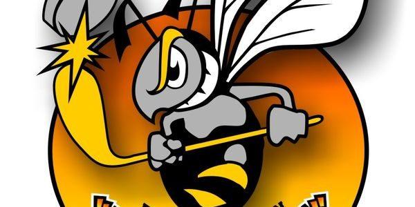 Hornets siegen souverän beim Schwenninger ERC – die Liga bleibt spannend
