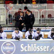 Trainerteam der Straubing Tigers bleibt komplett