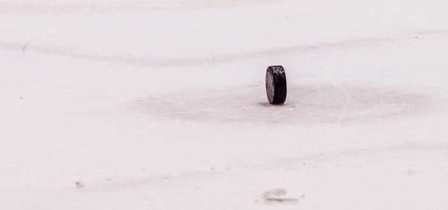 Das plötzliche Ende der Eishockey-Saison 2019/20