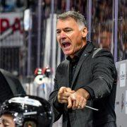 Ice Tigers am Wochenende ohne Cheftrainer