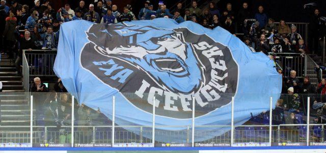 DEB bestätigt Oberliga-Zulassung der EXA Icefighters Leipzig unter Auflagen