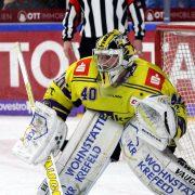 Black Wings Linz holen Ex-Goalie der Krefeld Pinguine
