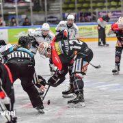 Augsburger Panther setzen weiter auf zwei junge Talente