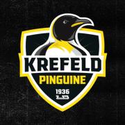 """Noch mehr """"Russen-Power"""" für die Krefeld Pinguine"""