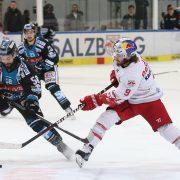 Zurück in Linz: Sébastien Piché