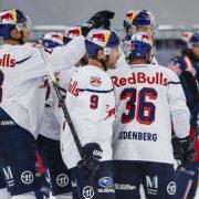 Turnier in Dresden: Red Bulls testen gegen Eisbären Berlin