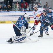 Aron Reisz verstärkt Falken-Angriff