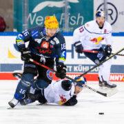 6:1 in Bremerhaven – Red Bulls für Königsklasse qualifiziert