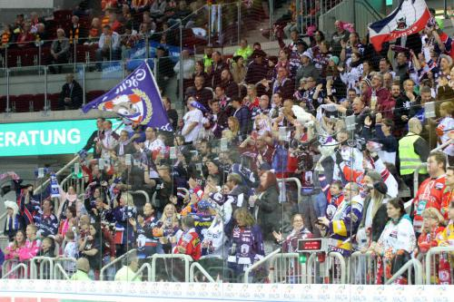 Eisbären Fans