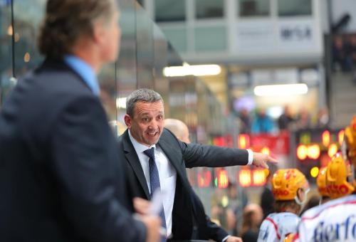 Eishockey, DEL, Iserlohn, Iserlohn Roosters vs. Straubing Tigers