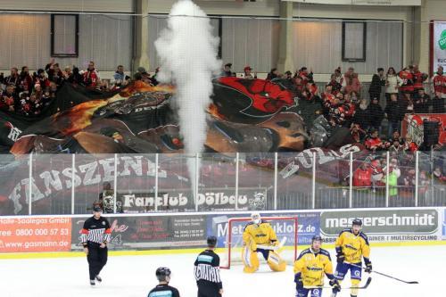 Saale Bulls Halle - Tilburg Trappers (29.11.2019)