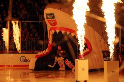Einlauf Kölner Haie