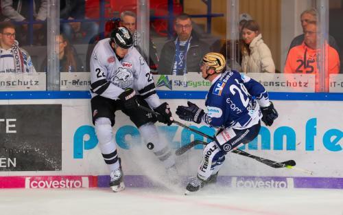 Eishockey, DEL, Iserlohn, Iserlohn Roosters vs. Thomas Sabo Ice Tigers