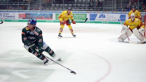 Augsburger Panther vs. Düsseldorfer EG